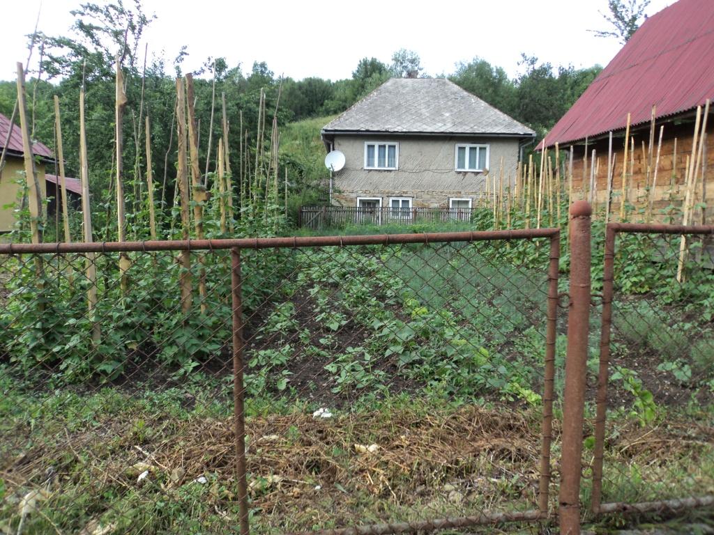 Roșia Montană legume