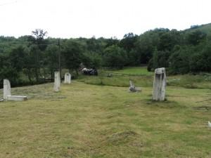 Sculpturi în curtea lui Eugen David din Roșia Montană