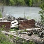 Ruine în iazul de decantare Geamăna